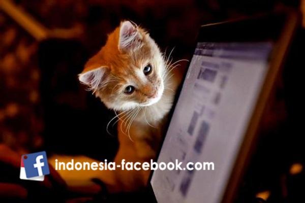 Tips Unik Buat Facebook Makin Asyik